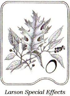 Logo LSE007