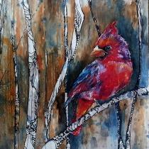 Cardinal-Forest-600